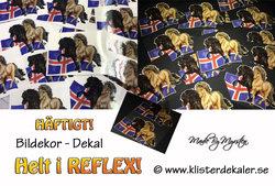Reflective Icelandic horses Iceland flag