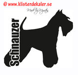Schnauzer profile, text