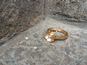 Kurbitsblomma 18K guld och diamant