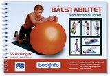 Bålstabilitet - Rehab till idrott