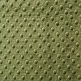Minky grön (Cactus)