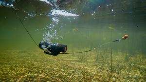 Water Wolf Bottom Fishing Kit