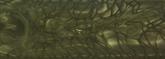 Juma Woodland Tac skala