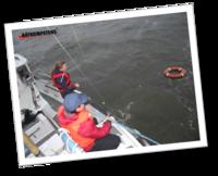 3 kurser = Skepparpaket Förarintyg+Kustskepparen+Båtpraktik