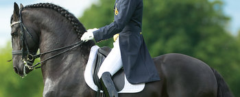 Bates WIDE Dressage Heritage Classic