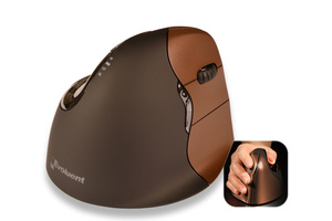 Evoluent Vertical Mouse 4 Wireless höger (small)