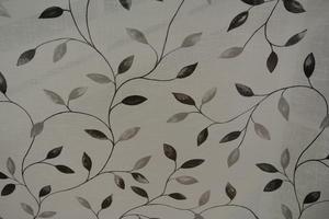 Abedul vitl botten med löv och grenar i svarta och gråa toner