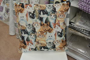 kudde med katter