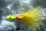 Regnbågsmördarn i färgen 52