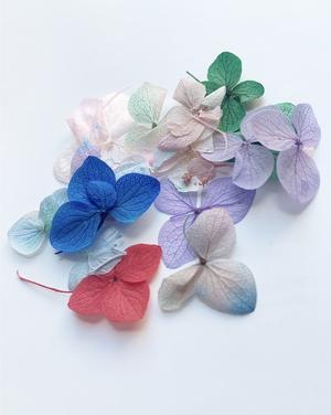 Torkade blommor 10 pack