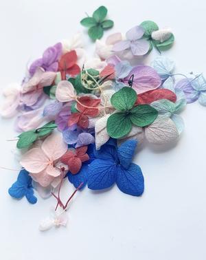 Torkade blommor 50 pack