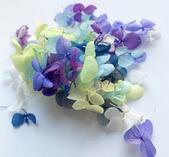 Torkade blommor 100 pack