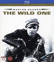 Wild One (Blu-ray)