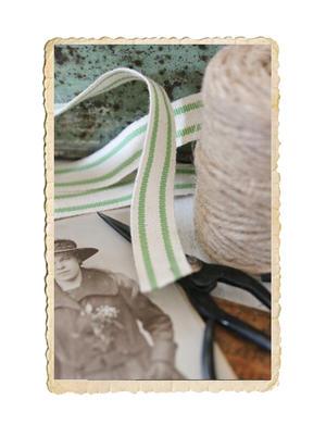 Band med vit/gröna ränder