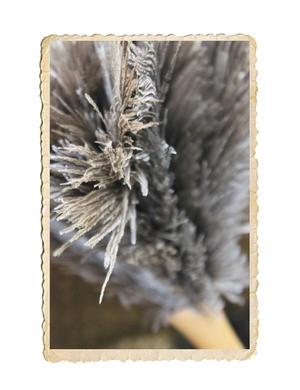 Dammvippa med strutsfjädrar