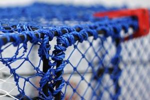 Prawn Creel, Parlour, Blue, Net Entrance