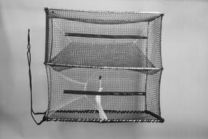 Cod Trap, Medium, One Entrance