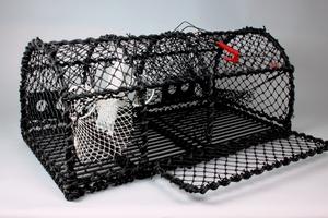 Lobster Creel 43'', Parlour, Side Opening, 19 KG