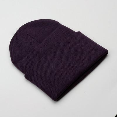 Carhartt Watch Hat Lakers