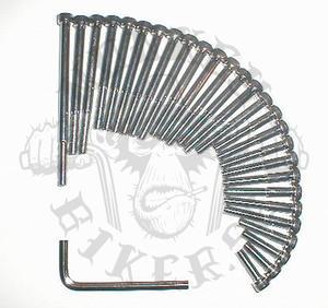 Motorbultar set insex