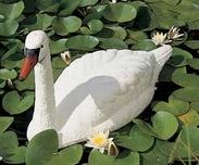 Swan Decoration
