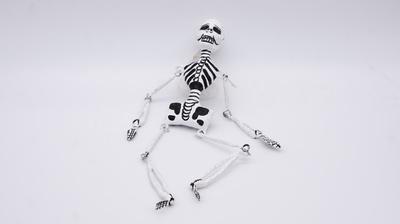 Sceleton  White 30cm Calevera