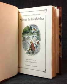 Stevenson, Robert Louis: Sjöresa på landbacken.