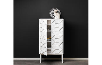A2-Collect Cabinet 2011