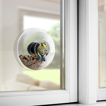 Eva Solo Fågelmatare för fönster