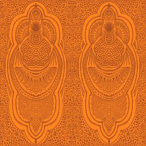 Bombay brun orange på orange bakgrund