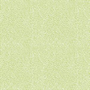 Mus öron, vitt on lindgrön