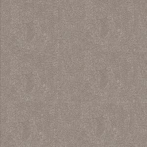 Afrika eucalyptus varm beige