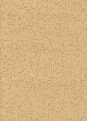 Wallpaper no 2164