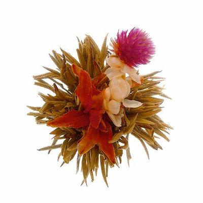 """Bai He Xian Zi """"Divine Lily"""" - 1st"""