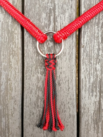 Neck rope with ring and tassel