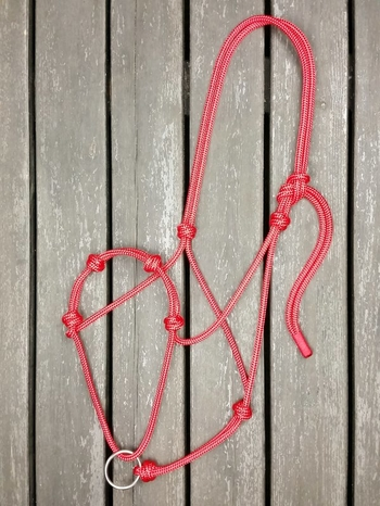 Rope halter with running lead rope ring