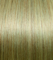 HairBooster #24 Ash Blond