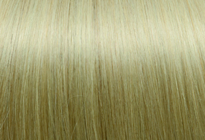 Exclusive Line #1002 Very Light Ash Blond