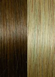 Selected Line #12/DB3 Golden Blond With Dark Blond Stripes