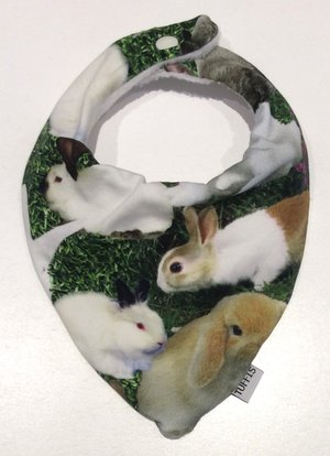 Dregglis Kaniner 2