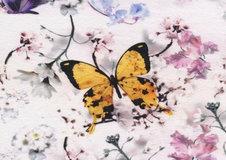 Sommar-fjäril - Ekologiskt
