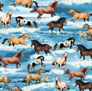 Hästar i vatten - EKOLOGISKT
