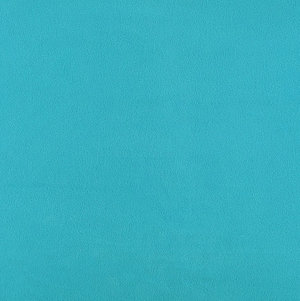 Polarfleece turkos