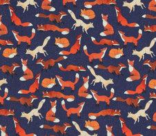 Rävar på mörkblå
