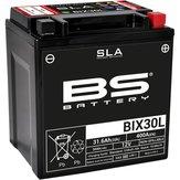 BS    BIX30L   AGM