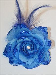 ROS - blå