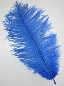 FJÄDER - 30 cm   blå