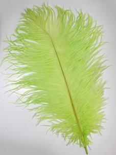 FJÄDER - 30 cm   limegrön
