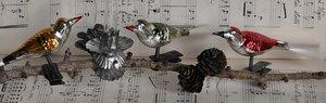 Gamla julgransprydnader fåglar