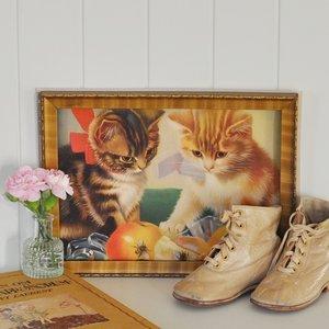 Gammalt tryck med kattmotiv